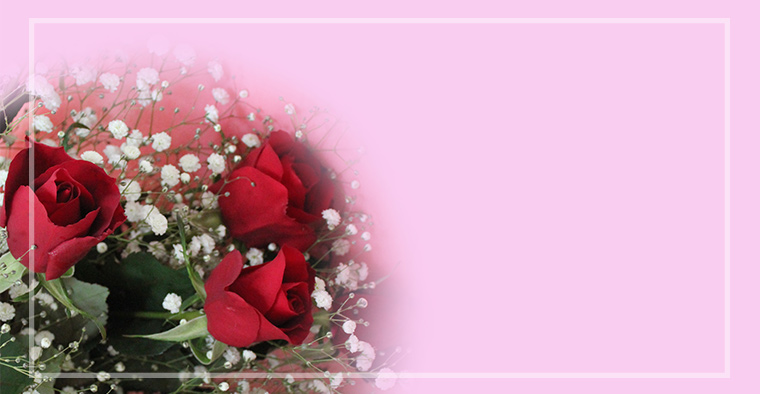 bara-roses