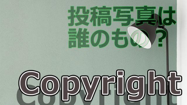 my-photo-copyright
